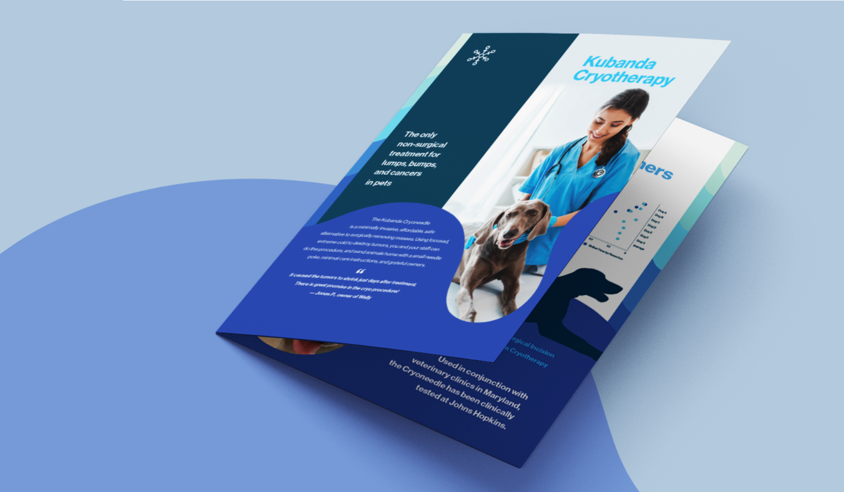 Propr Agency's Kubanda Cryotherapy Brand Strategy, Print & Digital Design, Copywriting